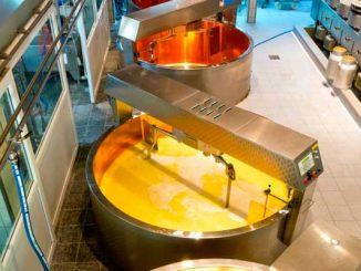 proizvodstvo-syra